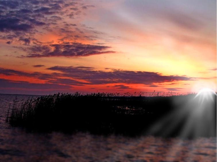 http://images.sevstar.net/images/00311033251905347648.jpg