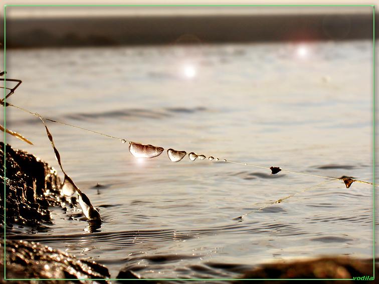 http://images.sevstar.net/images/07333469948077186837.jpg