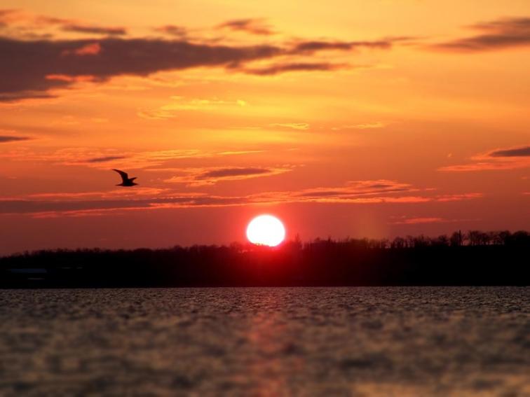 http://images.sevstar.net/images/12217621917798653212.jpg