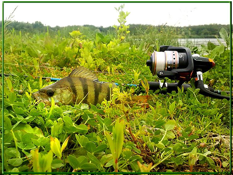 http://images.sevstar.net/images/20260484299108289571.jpg