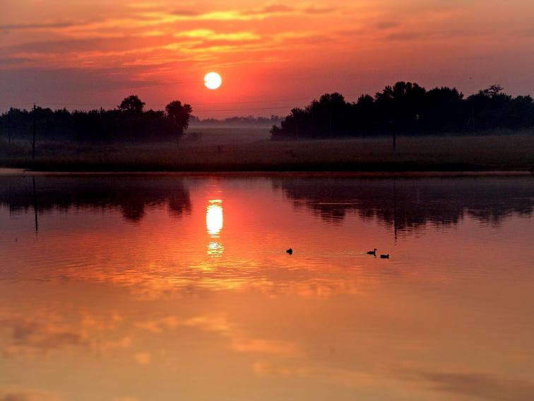 http://images.sevstar.net/images/25215841580250060235.jpg
