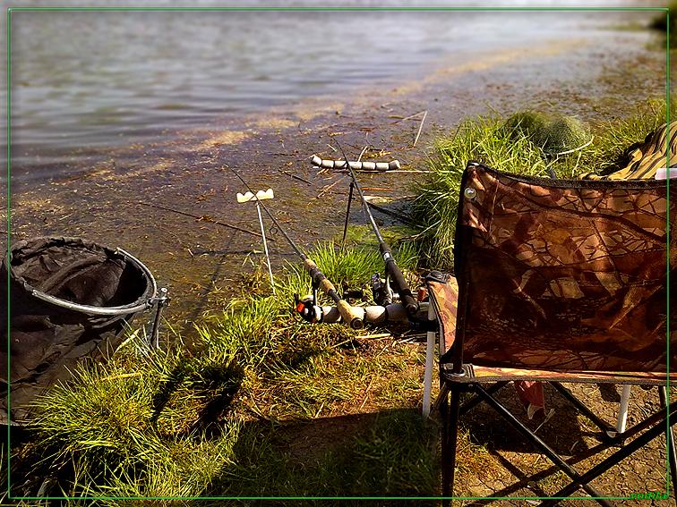 http://images.sevstar.net/images/35536564911601850075.jpg