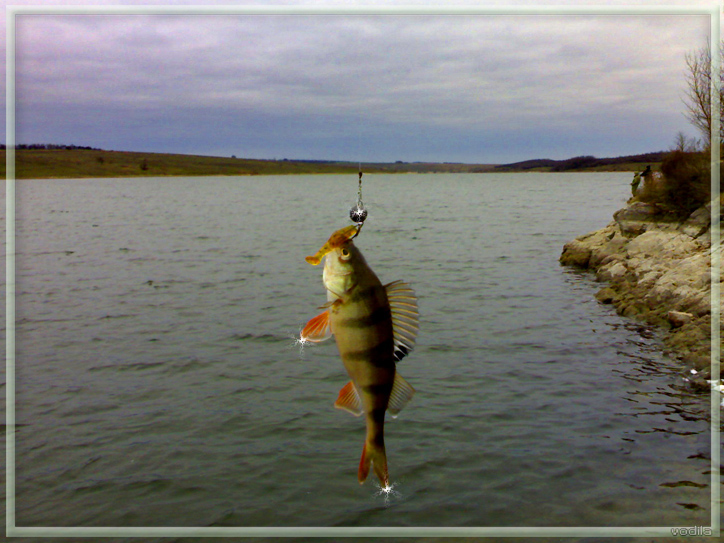 http://images.sevstar.net/images/38423525174101901047.jpg