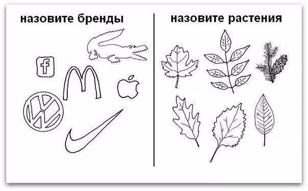 http://images.sevstar.net/images/43630815351605627347.jpg