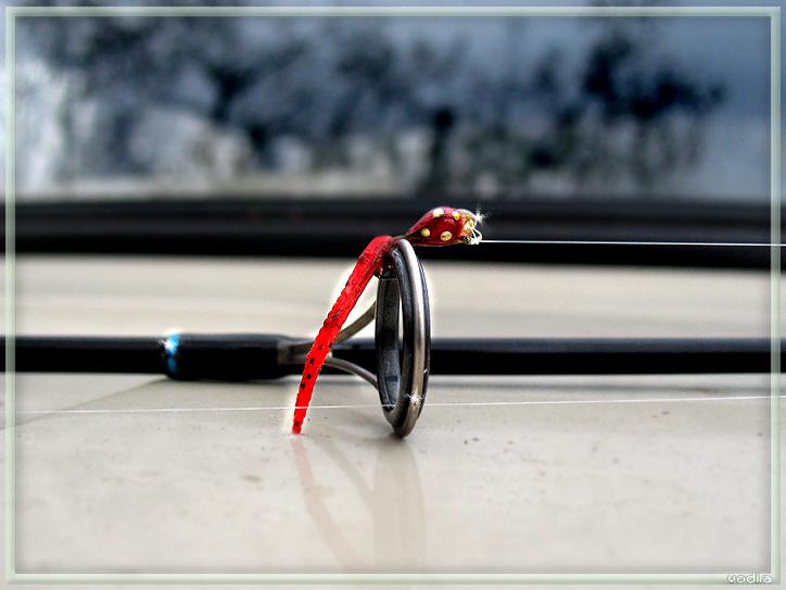 http://images.sevstar.net/images/56075258452860334767.jpg