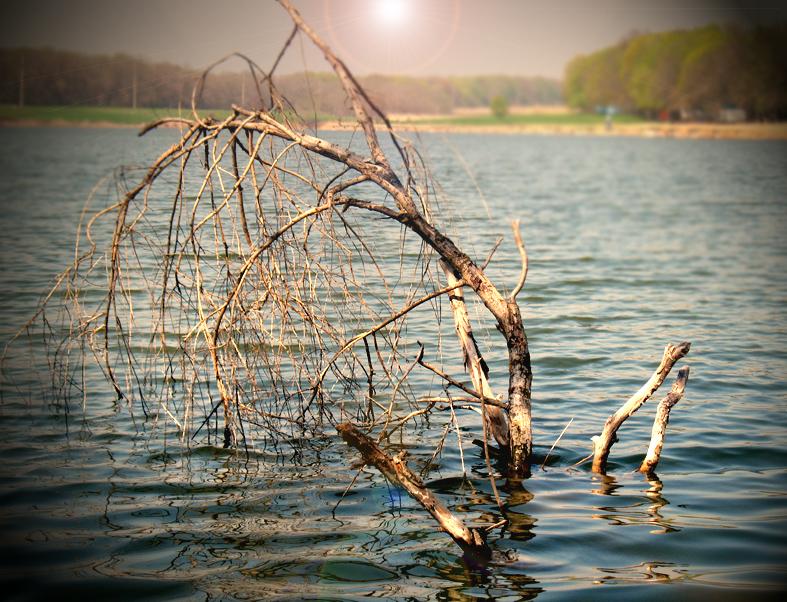 http://images.sevstar.net/images/58130833540288923064.jpg