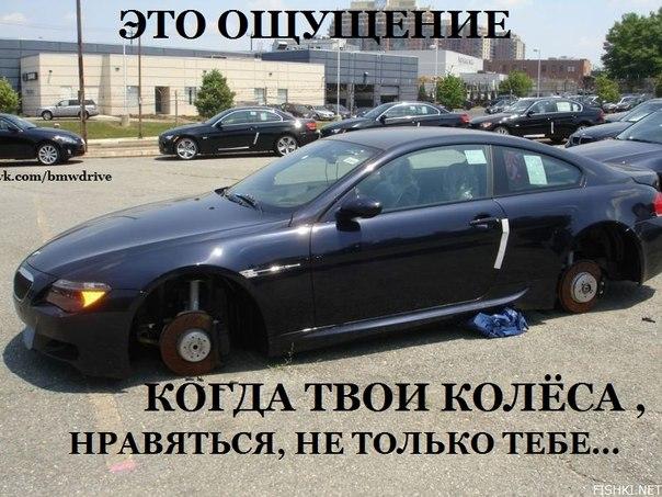 http://images.sevstar.net/images/58633786970549687897.jpg