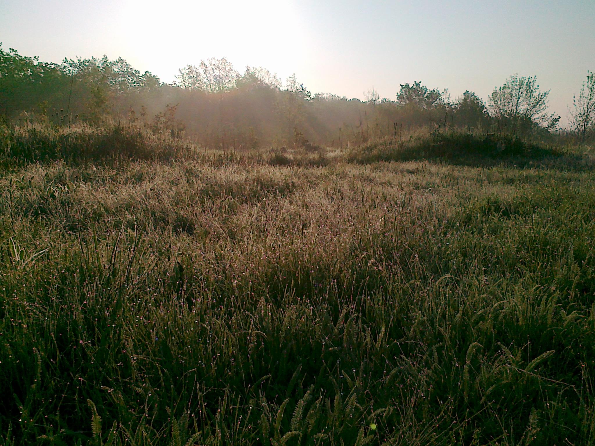 http://images.sevstar.net/images/60633039154028379889.jpg