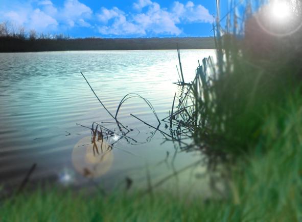 http://images.sevstar.net/images/67674459741405209813.jpg