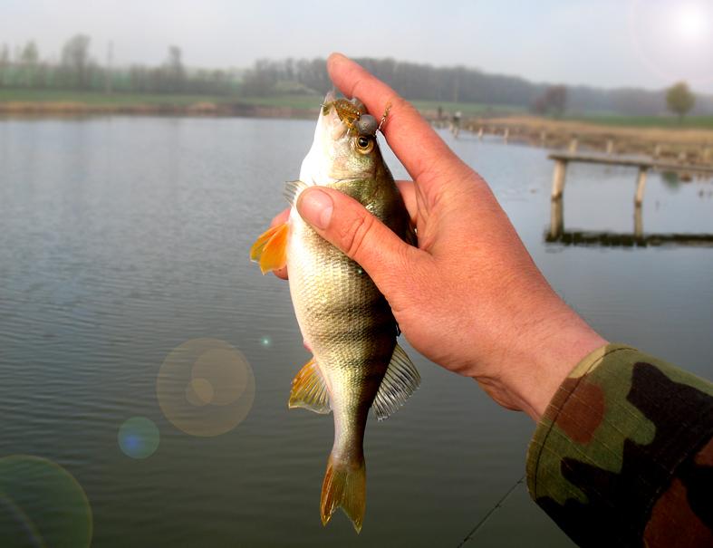 http://images.sevstar.net/images/68607136903007107978.jpg
