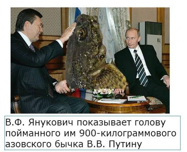 http://images.sevstar.net/images/70002176903955820818.jpg