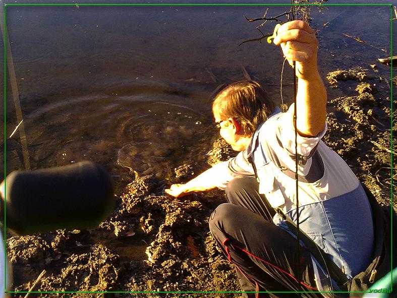 http://images.sevstar.net/images/72989140766809002438.jpg