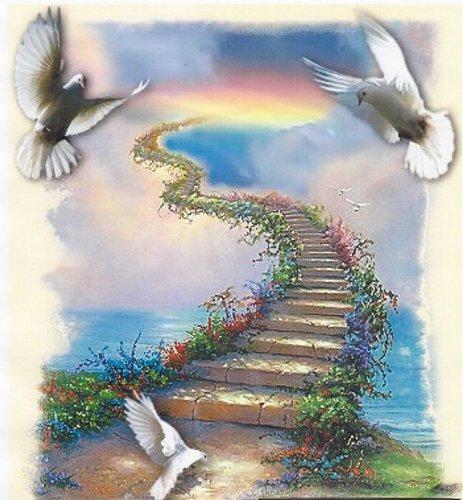 http://images.sevstar.net/images/77198348266030211213.jpg