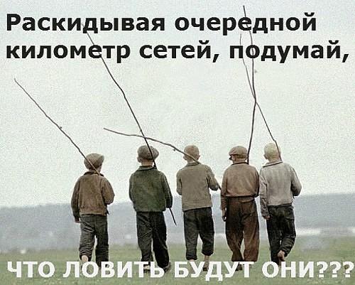 http://images.sevstar.net/images/97712593286401902776.jpg