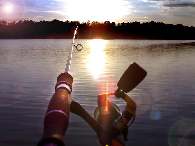 http://images.sevstar.net/images/98704580171537172544.jpg